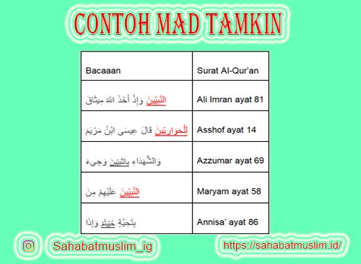 Contoh Mad Tamkin